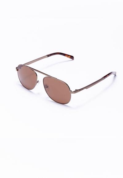 Formula 1 Eyewear Zonnebril in de kleur Bruin, Productweergave