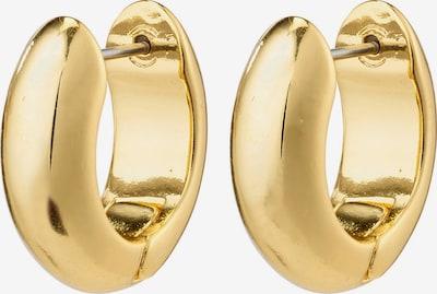 Auskarai 'Vida' iš Pilgrim, spalva – Auksas, Prekių apžvalga