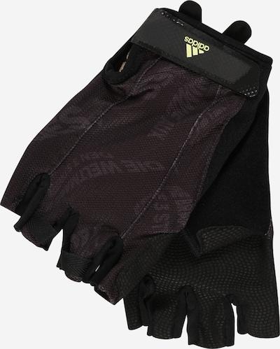 ADIDAS PERFORMANCE Gants de sport en baie / noir, Vue avec produit