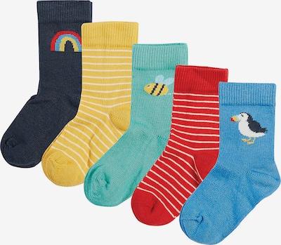 Frugi Socken in blau / gelb / grün / rot, Produktansicht