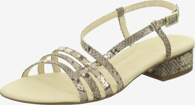Paul Green Sandale in beige / silber, Produktansicht