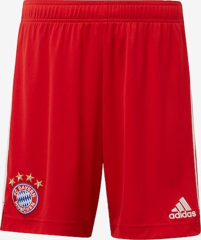 ADIDAS PERFORMANCE Sporta bikses 'FC Bayern München' pieejami sarkans / balts, Preces skats