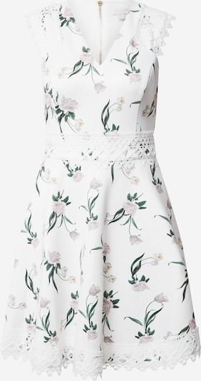 Ted Baker Kleid in mischfarben / weiß, Produktansicht