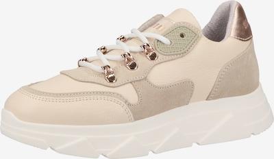 STEVE MADDEN Sneaker in beige / creme, Produktansicht