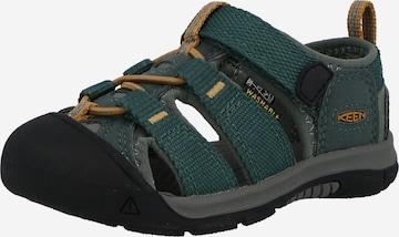 KEEN Sandale NEWPORT H2' in Grün