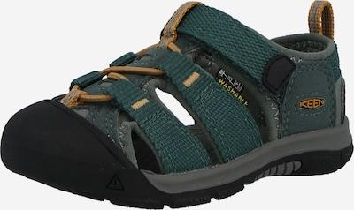 KEEN Sandale NEWPORT H2' in grün, Produktansicht
