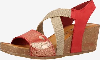 IGI&CO Sandale in beige / rot, Produktansicht