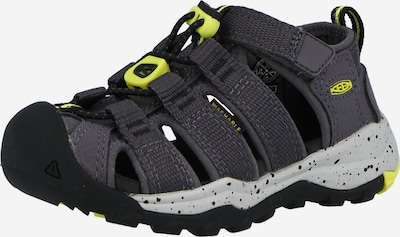 KEEN Sandale 'Newport Neo' in basaltgrau, Produktansicht