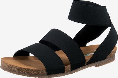 Greenova Sandalen in schwarz, Produktansicht