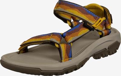 TEVA Sandales en bleu roi / marron châtaigne / rouille / brun foncé / jaune d'or, Vue avec produit