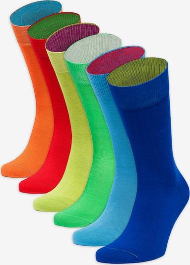 Von Jungfeld Regenbogen in mischfarben, Produktansicht