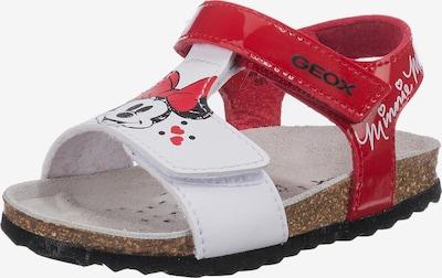 GEOX Sandale 'Chalki' in rot / schwarz / weiß, Produktansicht