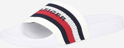 TOMMY HILFIGER Pistokkaat värissä laivastonsininen / punainen / valkoinen, Tuotenäkymä