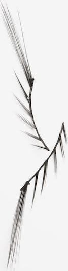 BEAUTY IS LIFE Wimpern 'V.I.P.' in schwarz, Produktansicht