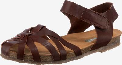 Greenova Sandalen in dunkelbraun, Produktansicht