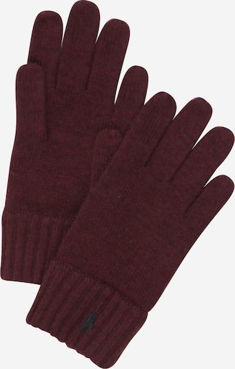 POLO RALPH LAUREN Handschoenen in de kleur Wijnrood, Productweergave