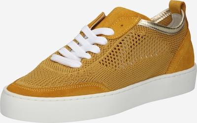 BULLBOXER Baskets basses en jaune d'or, Vue avec produit
