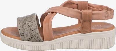 Paul Vesterbro Sandale in braun / grau / weiß, Produktansicht