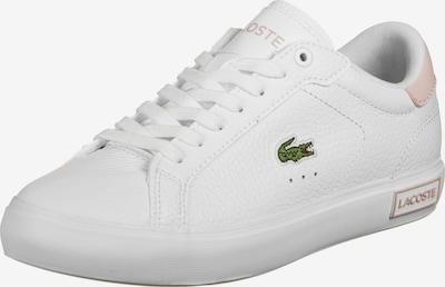 Sneaker bassa LACOSTE di colore rosa / bianco, Visualizzazione prodotti