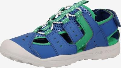 GEOX Sandale in blau / grün, Produktansicht