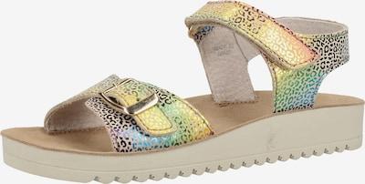 KICKERS Sandale in mischfarben, Produktansicht