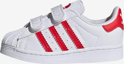 ADIDAS ORIGINALS Sneaker 'Superstar' in feuerrot / weiß, Produktansicht