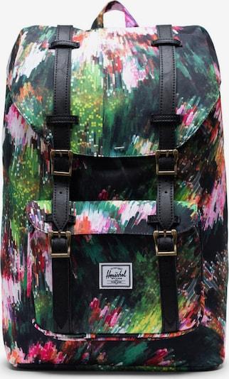 Herschel Mugursoma 'Little America' jauktu krāsu, Preces skats