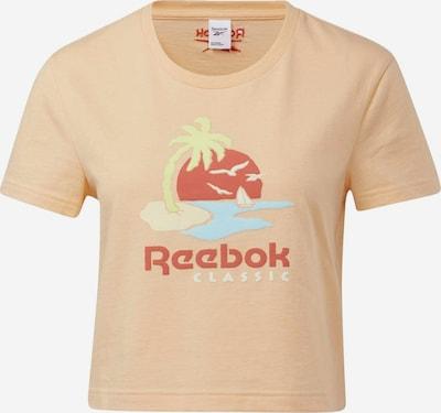 Reebok Classic T-Shirt in hellblau / apfel / lachs / dunkelrot, Produktansicht