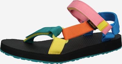 TEVA Sandale in mischfarben, Produktansicht