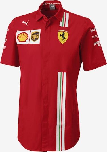 PUMA Hemd 'Ferrari Team' in mischfarben / rot, Produktansicht