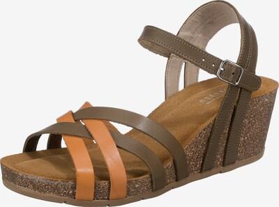 Paul Vesterbro Sandale in braun / khaki, Produktansicht