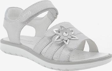PRIMIGI Sandalen in Silber