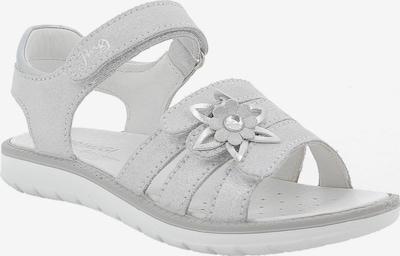 PRIMIGI Sandalen in silbergrau, Produktansicht