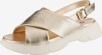 Högl Sandale in Gold