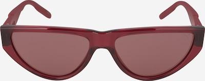 PUMA Saulesbrilles brūns, Preces skats