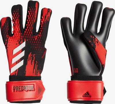 ADIDAS PERFORMANCE Torwarthandschuhe 'Pred Gl Lge' in rot / schwarz / weiß, Produktansicht