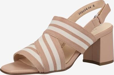 PETER KAISER Sandalen in beige / taupe, Produktansicht