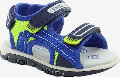 Lumberjack Sandale in blau, Produktansicht