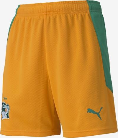 PUMA Sporthose 'Elfenbeinküste' in grün / orange: Frontalansicht