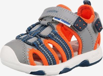 GEOX Sandale 'MULTY' in blau / grau / orange, Produktansicht