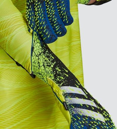 ADIDAS PERFORMANCE Sporthandschoenen ' Predator' in de kleur Blauw / Geel / Zwart, Productweergave