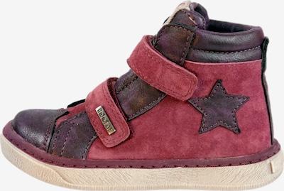 Pio Boots 'Pio mit Klettverschluss' in lila, Produktansicht