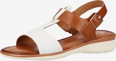 ARA Sandalen in braun / weiß, Produktansicht