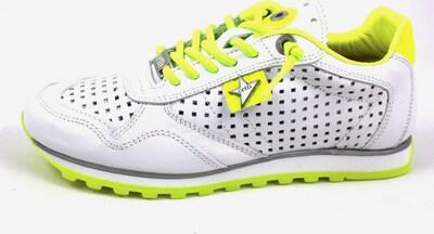 Cetti Schnürschuhe in neongrün / weiß, Produktansicht