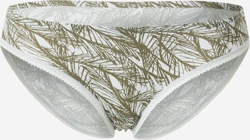 Calvin Klein Underwear Püksikud, värv hall