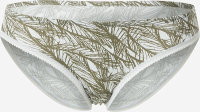 Calvin Klein Underwear Trosa i ljusgrå / oliv, Produktvy