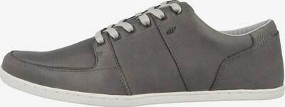 BOXFRESH Sneaker in basaltgrau, Produktansicht