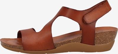 COSMOS COMFORT Sandalen met riem in de kleur Lichtbruin, Productweergave