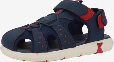 KICKERS Sandale in dunkelblau / rot, Produktansicht
