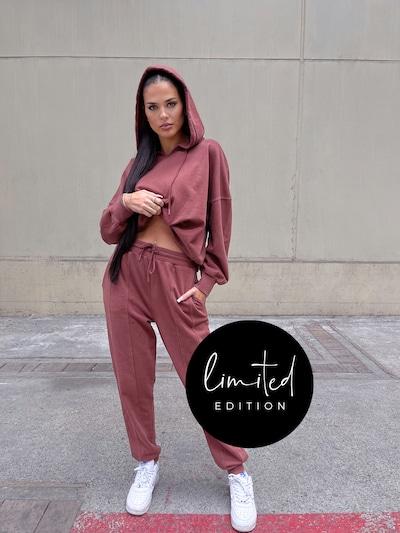 Pantaloni 'Lucia' ABOUT YOU Limited pe maro închis, Vizualizare model